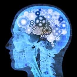 انجام پایان نامه کارشناسی ارشد روانشناسی